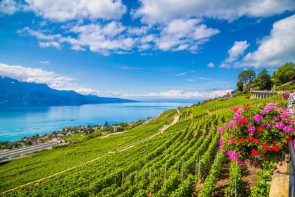 Mit dem Mietwagen von Genf aus zum Schloss Chillon